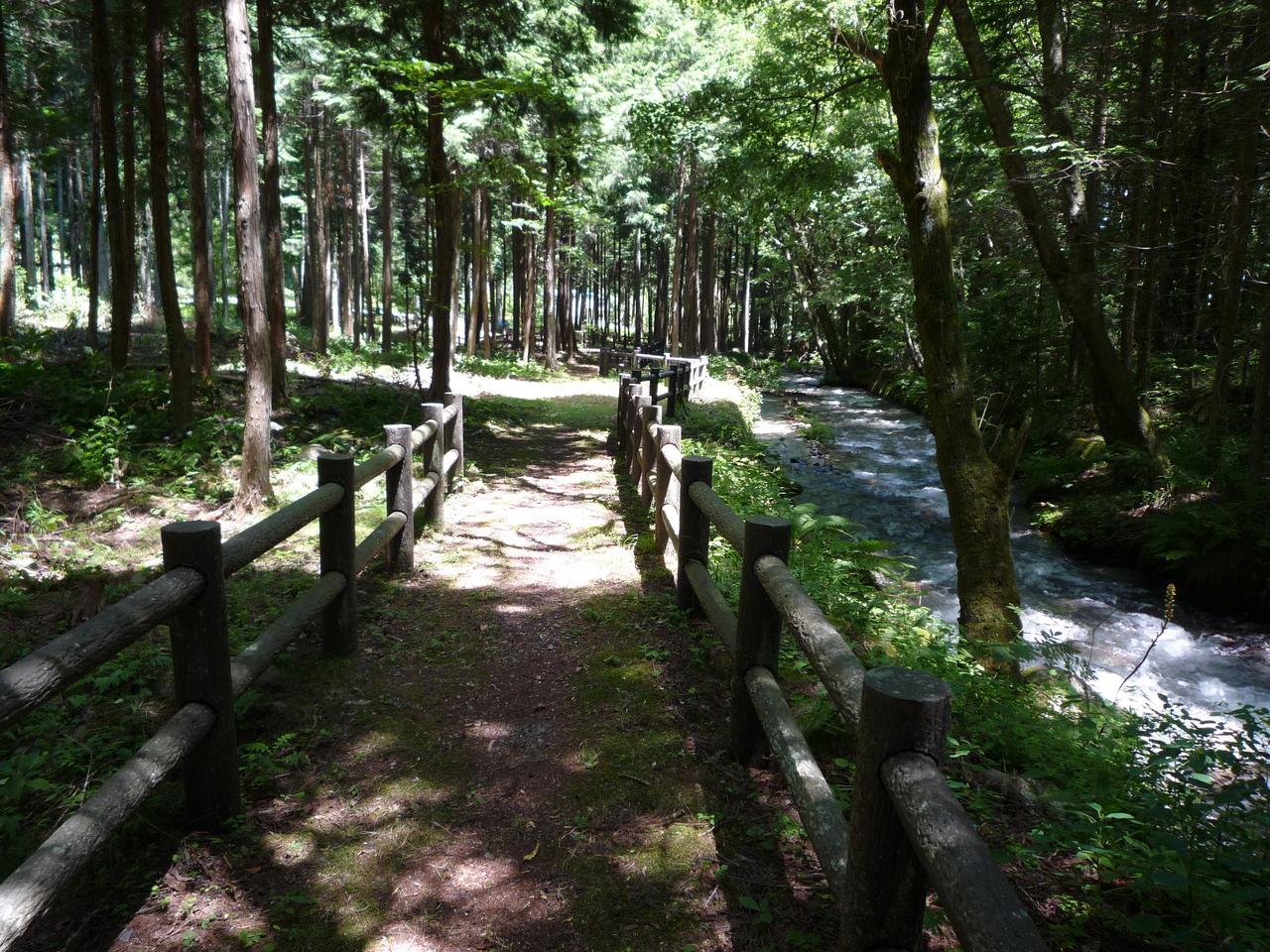 「こもれ陽の径」中央アルプス山麓の散歩道