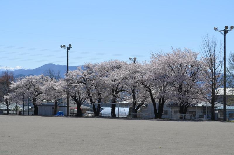 spring_3