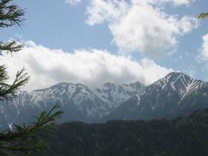 15宮田高原から間近に見る中央アルプスIMG_1035