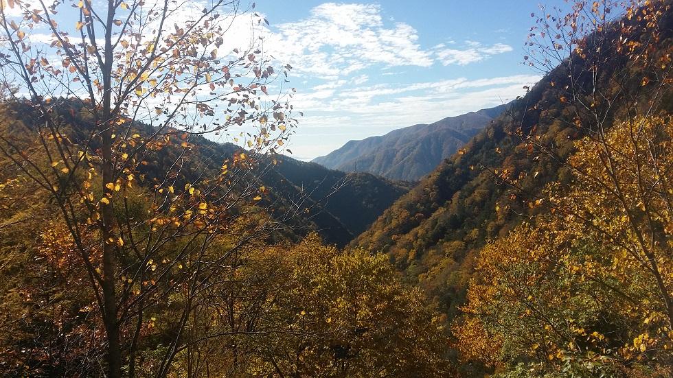 【10/16締切】10/25(日)伊勢滝ウォーキング開催されます♪
