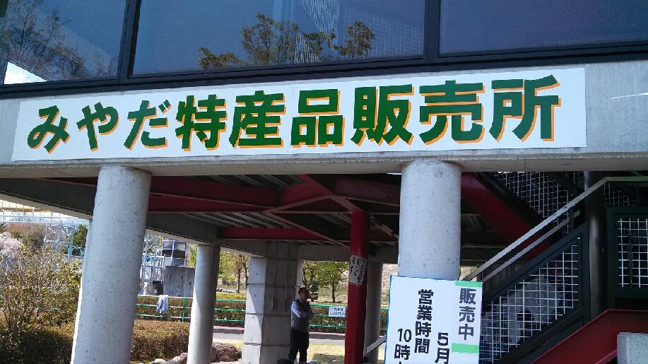 超目玉!【な、な、なんとキャベツ1玉150円!!】5/3~5ふれあい広場にて特産品販売♪