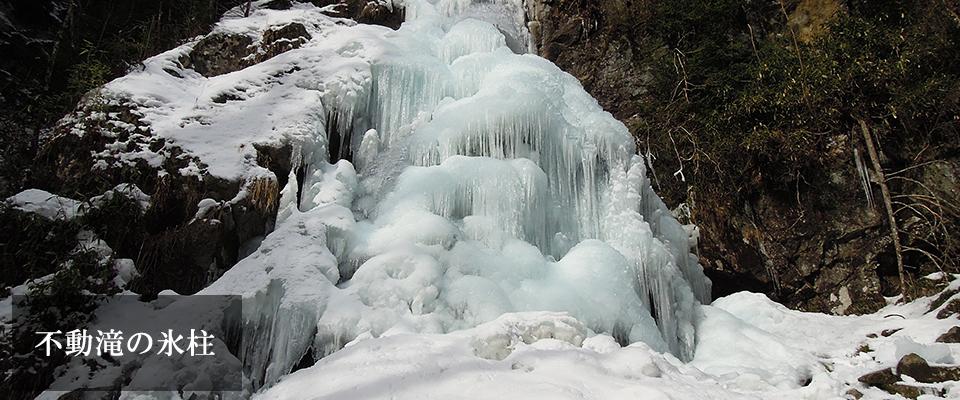 不動滝の氷柱
