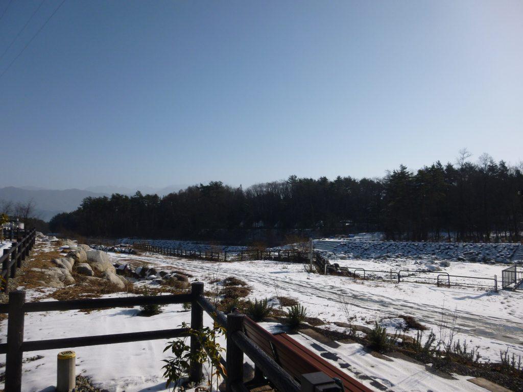【1月17日(日)7:45~】NHK「さわやか自然百景」放送されますよー☆