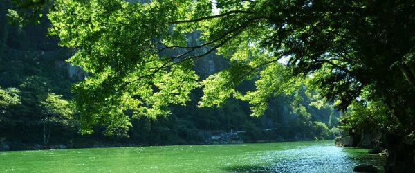 北の城・伊那峡
